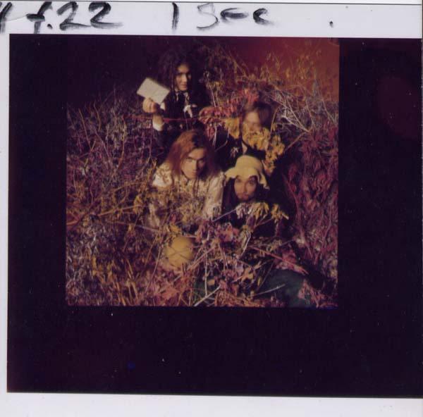 39-photos1-4